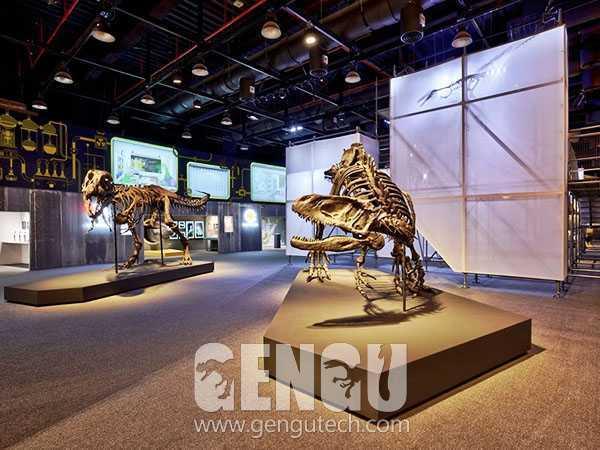 T-Rex Fossil(FP-257)