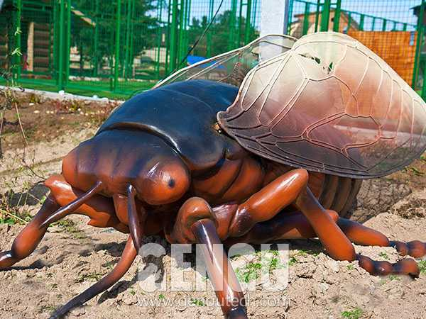 Cicada(AI-479)