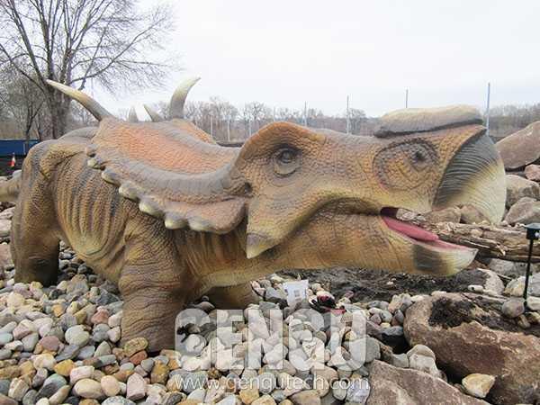 Pachyrhinosaurus(AD-615)