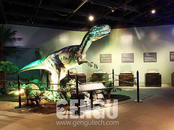 Metriacanthosaurus(AD-642)