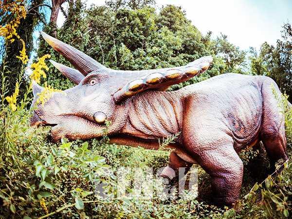 Triceratops(AD-1152)