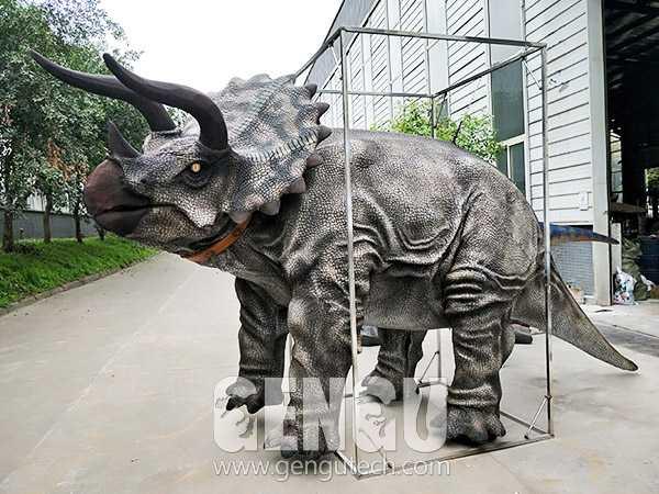 Triceratops Costume(DC-1243)